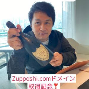ずっぽし取得できました!zupposhi.com  ドメイン