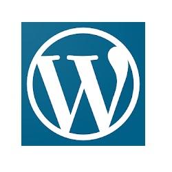 超初心者向け・WordPressが自動更新されない時
