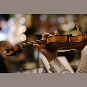サンデージャポン|ハーバード卒バイオリニストの勉強法