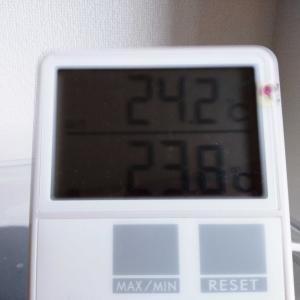 文鳥さんの温度計の電池が切れました。