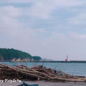 故郷の美しい海で風に吹かれて