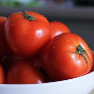 トマトの育て方。病気と思っていたのは間違いかも【生理障害】