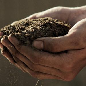土の作り方【花壇や野菜の育苗培養土を自分で作る】