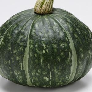 かぼちゃの育て方・貯蔵【記事のまとめ】