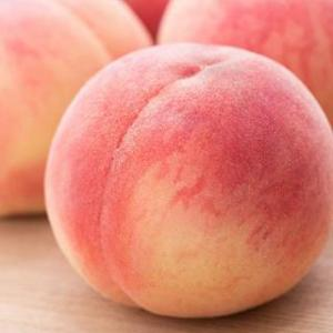 果実の調理法(食憲鴻秘)、続き