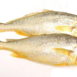 黄魚、梁実秋