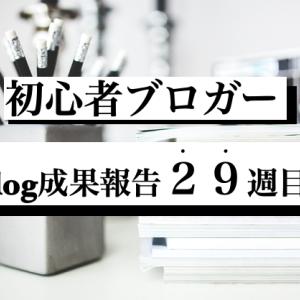 6000PVブロガーのブログ成果報告『29週間(6/6〜6/12)経過』今までしてきたこと。