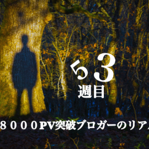 【函館でブログ×理学療法士×複業。1週間まとめ】53週目(11/21〜11/27)