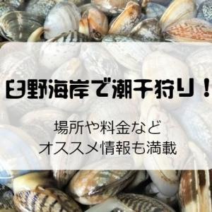 臼野海岸で潮干狩り!2020年もアサリが大漁!?