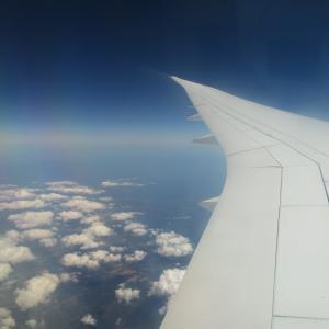 今年も日本に帰ります!やっぱり帰りたい理由があるから。