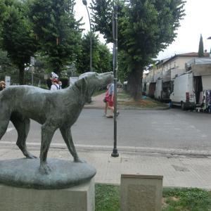 イタリア版ハチ公?忠犬フィードの物語
