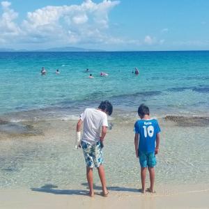 エルバ島より30分「ピアノーザ島」、クリスタルブルーの海と廃墟の町と