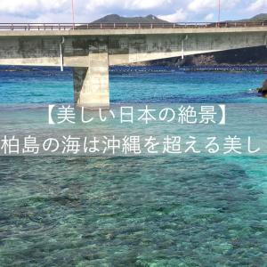 【日本の絶景】高知県・柏島の海は沖縄を超える美しさでした