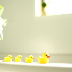 お風呂は心も洗い流す時間