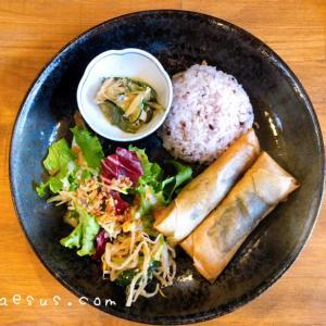「醤油豆入り豆腐とアボカドの揚げ春巻き」HAKKO YAMANOUCHIでランチ