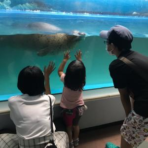 札幌の小さな水族館でハマった生き物とは