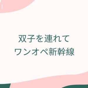 双子を連れてワンオペ新幹線移動~0歳7か月編~
