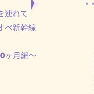 双子を連れてワンオペ新幹線移動~1歳0か月編~