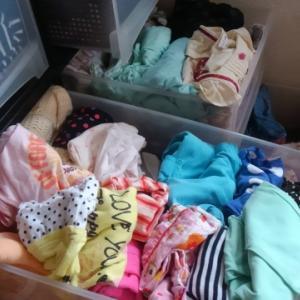 【保育園児の子供服】devirockは丈夫で安くてコスパ良し