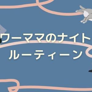 【ワンオペ双子育児】ワーママのナイトルーティン