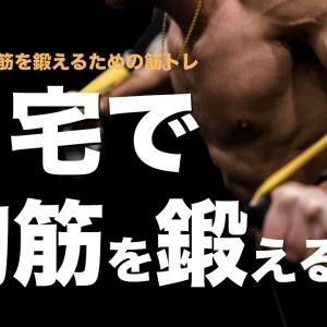 自宅で「大胸筋を鍛える」ための筋トレメニュー5選【筋トレ初心者向け】