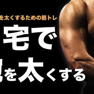 自宅で「腕を太くする」ための自重トレーニング4選【筋トレ初心者向け】