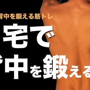 自宅で「背中を鍛える」ための筋トレメニュー5選【筋トレ初心者向け】