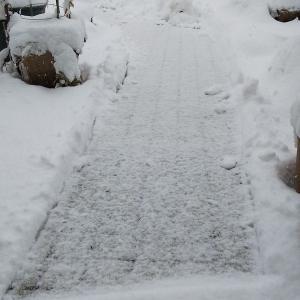 雪が積もると新聞が読めない高齢者がいるかも