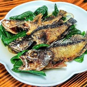 魚料理の材料費は0円
