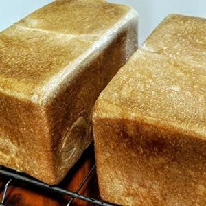 ハチミツ食パンと鶏ももジェノベーゼ焼き