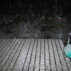 雪が降るとグラスアートが進みます