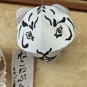 猫ねぷた作り〜パニック症