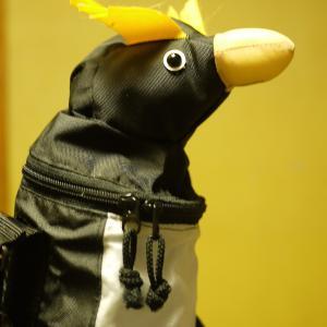 ■愛しのペンギン■