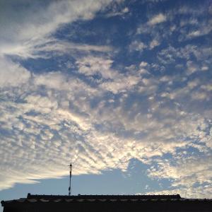 ■ 空を見上げて ■