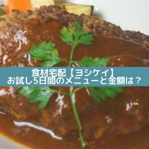 食材宅配【ヨシケイ】お試し5日間のメニューと金額は?
