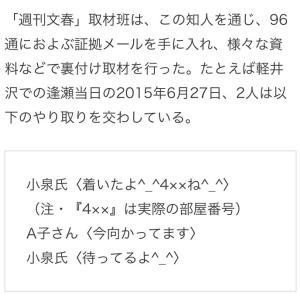 【政治資金で不倫^-^】人妻と不倫 #小泉新次郎 ホテルでメール「ついたよ^-^部屋は◯ね^-^」「待ってるよ^-^」