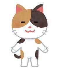 【掃除】消したい猫臭 1