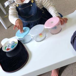 伊勢崎水曜日プレミアム 2歳児さんも、活動的に動いています。コスモス・レンコンもばっちり。
