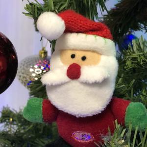 クリスマスです~ 結心とがん教育