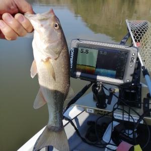亀山ダムで初釣りからの初バスゲット