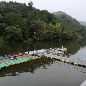 亀山ダム 2020/ 7/24 釣果8本 Max30cm未満、リチウム電池記録25回目