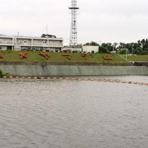 亀山ダム 2021/ 5/28 釣果約10本 25cm~Max39cm 、リチウム電池57回目