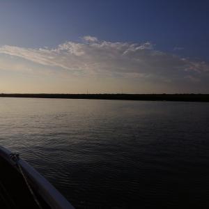 利根川 2021/ 8/ 1 釣果4本 Max32cm 暑くて午前中でギブアップ