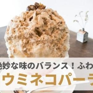 『ウミネコパーラー』絶妙な味のバランス!優しい口どけのふわほわ氷。