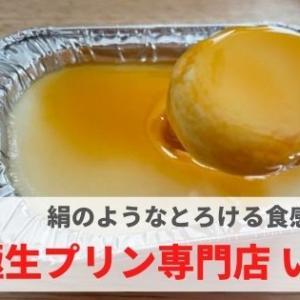 『極生プリン専門店 いけ田』とろける食感!こだわりプリンを気軽に