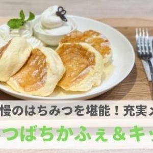 『みつばちかふぇ&キッチン』自慢のはちみつとチーズを堪能できる充実メニュー!【PR】