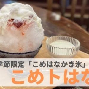 『こめトはな』発酵食品の魅力がギュッとつまったかき氷!