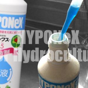ハイドロカルチャーの肥料は液肥一択!『ハイポネックス』の特徴