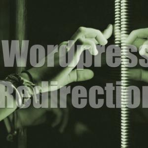 旧サイトへのアクセスを自動的に新サイトへ転送する方法!WordPressプラグイン「Redirection」