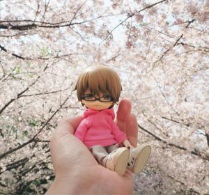 桜を見に行きたかった